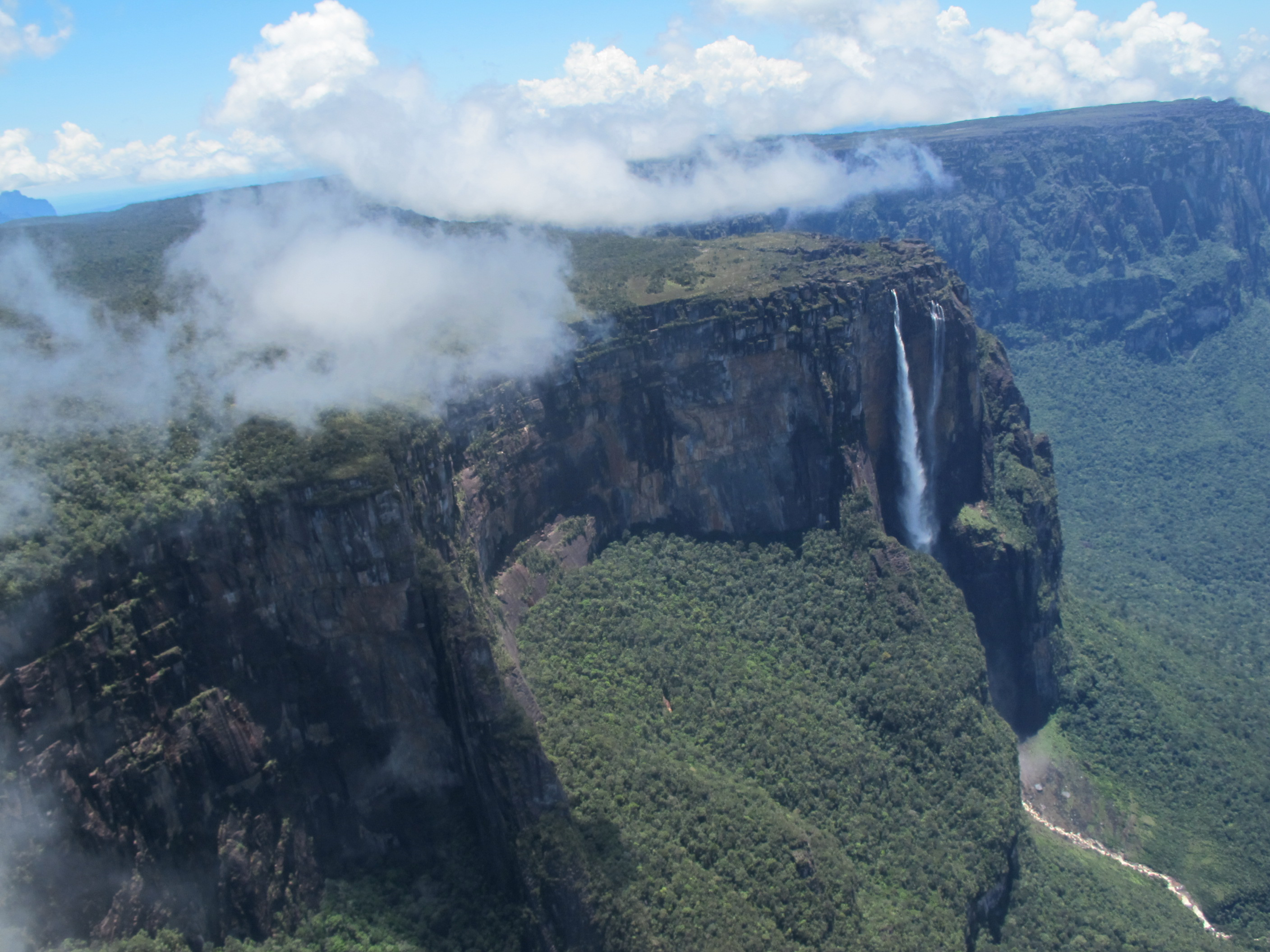Angel Falls Expedition and Roraima Trek | Angel-Eco Tours